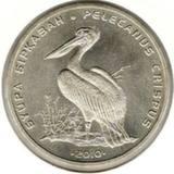 50 тенге 2010, Кудрявый Пеликан